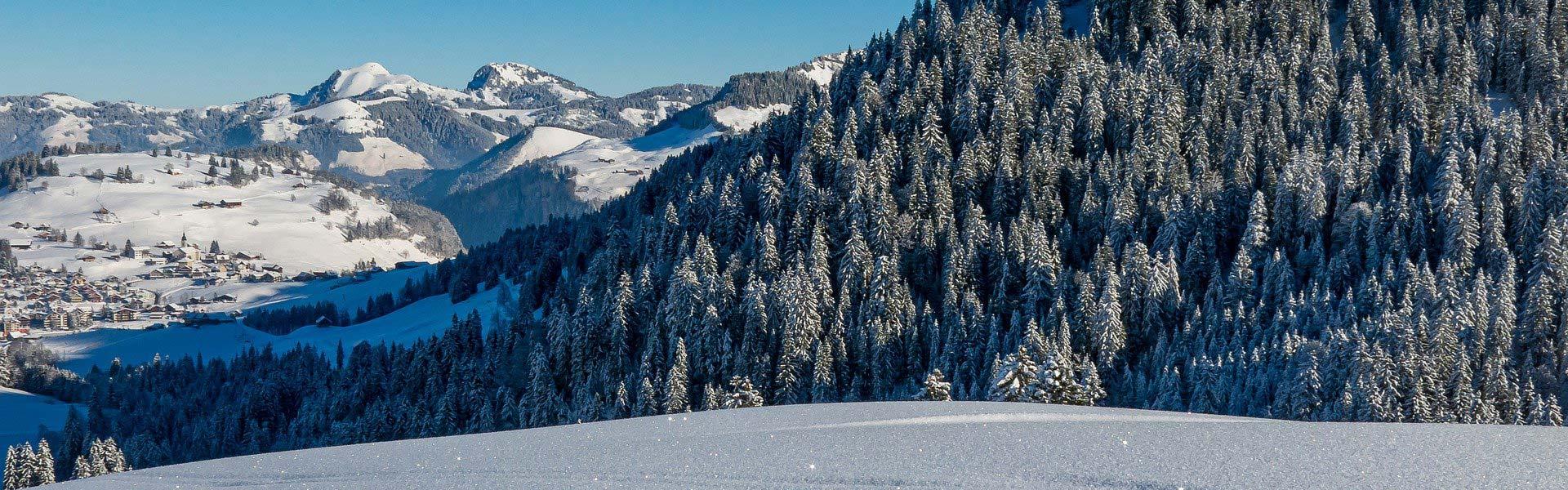 El Blog d'Andorra Ski Rental
